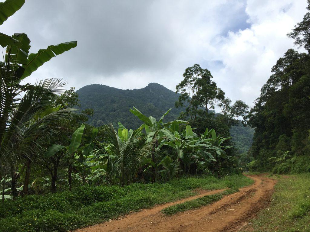 Mt. Lubog